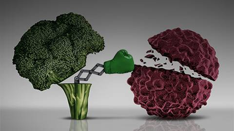 How Dietary Choices Can Influence Cancer Outcomes