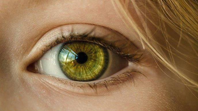 Google AI Could Predict Eye Condition Behind Vision Loss