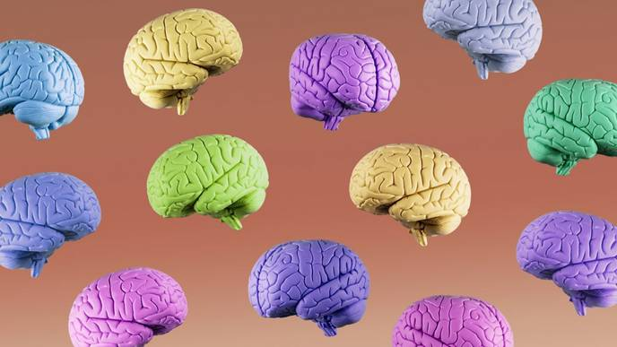 Lab-Grown 'Mini-Brains' Suggest COVID-19 Can Infect Human Brain Cells