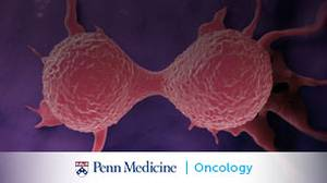 Evolving Insights into the Pathophysiology of NSCLC