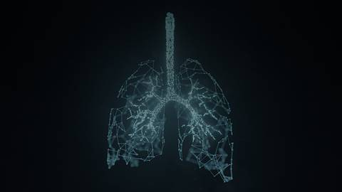 Evaluating Biomarkers at Work in NSCLC