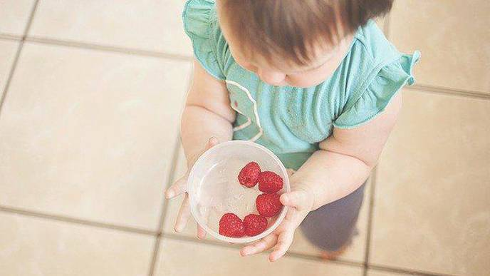 Healthy Eating Behaviors in Childhood May Reduce the Risk of Adult Obesity & Heart Disease