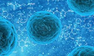 The Role of Integrative Therapy in Cancer Care