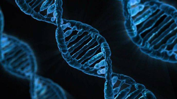 Germline Genetic Testing Can Benefit All Cancer Patients as a Routine Practice in Cancer Care