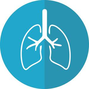 A Practical Perspective on Aggressive Disease Management in NSCLC
