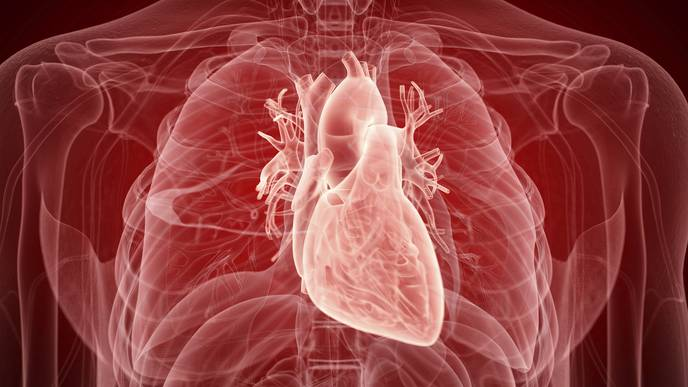 New Evidence That COVID-19 Can Have Lasting Effects on Heart Health
