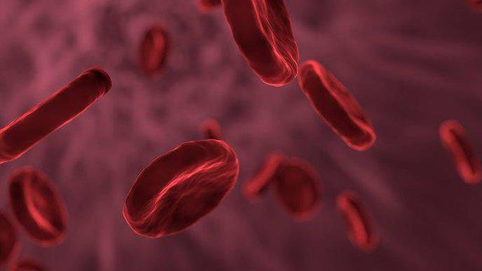 Alzheimer's: Copper Transport in Blood Provides Fresh Clues