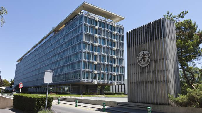 US to Halt Funding to the World Health Organization