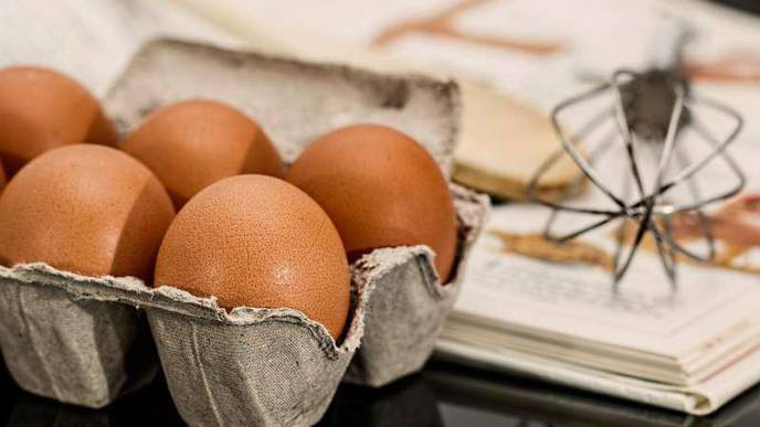 Daily Protein Intake Linked to AFib in Women
